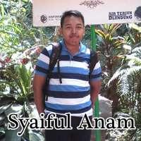 Syaiful Anam image